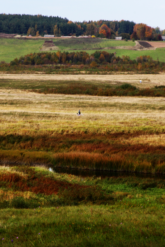 ковёр поле цвета осенние