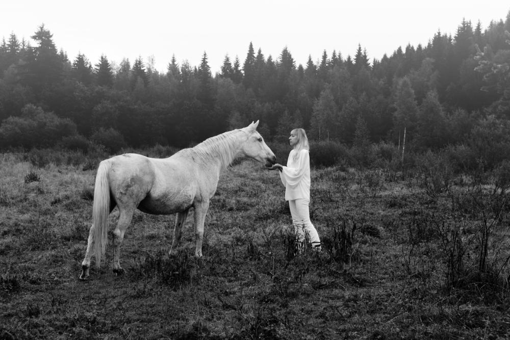 белая лошадь в лесу кушает с рук девушки яблоки